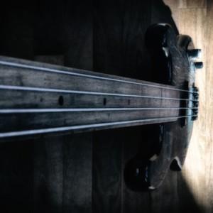 fender p-bass: defanged